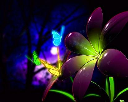 Обои Волшебный цветок открывается только по ночам, на него слетаются бабочки