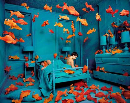 Обои Креатив Sandy Skoglund - По синей комнате летают оранжевые рыбы