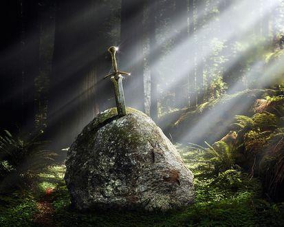 Обои Меч торчит из камня в заколдованном лесу, где сквозь густые деревья пробиваются слабые лучи солнца