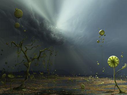 Обои Прикольная планета с неизвестными растениями растущими посреди болота