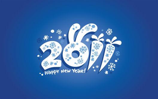 Обои Happy new  year 2011!