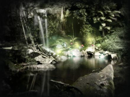 Обои Райское место, озеро, камни и цветы