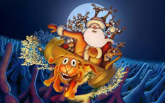 Обои Дед Мороз с оленями забрались в сани, которые везёт обезумевший пёс