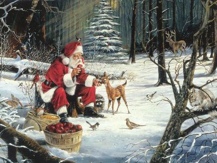 Обои Дед Мороз подкармливает оленёнка