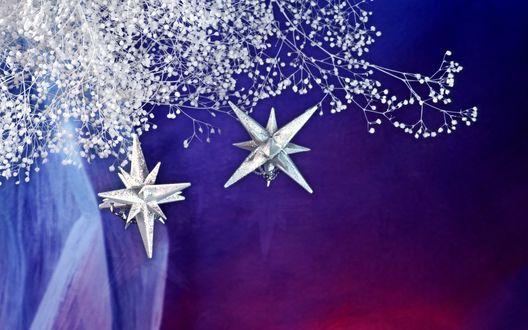 Обои Новогодние звезды и побеленные гипсофилы