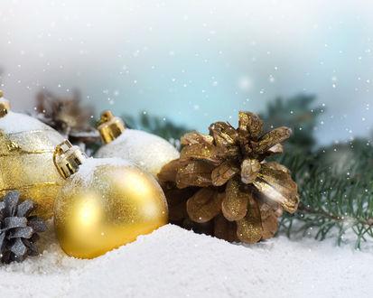 Обои Шишки и золотые шарики в снегу