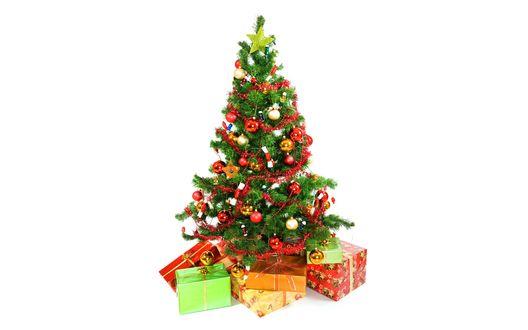 Обои Подарки под новогодней елкой