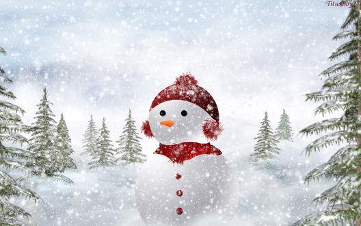 Обои Снеговик в красной шапочке и шарфе в лесу под снегопадом