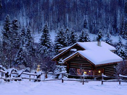 Обои Заснеженный лес, одиноко стоит домик, но перед ним стоит наряженная ёлочка и в доме радостно переливаются разноцветные огни ёлочных гирлянд, словом, Новый Год добрался даже сюда, в эту глушь!
