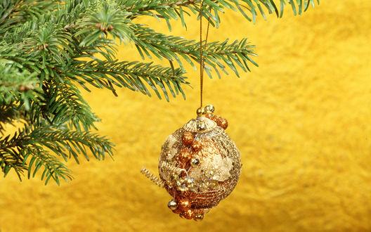 Обои Новогодняя игрушка на елке