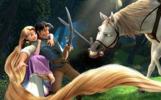 Обои Рапунцель: Запутанная история, принц с Конем сражаются на мечах, принцесса в ужасе спряталась за принца