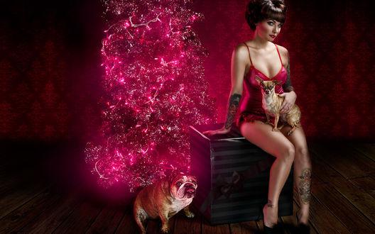 Обои Гламурная Снегурочка с собаками рядом с абстрактной ёлочкой