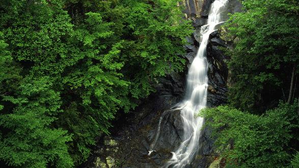 Обои Зелёный Национальный парк с водопадом в Вирджинии