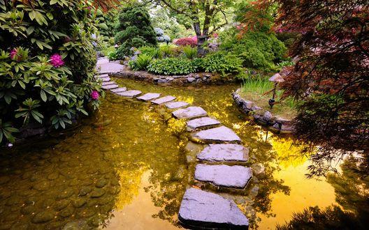 Обои Дивный садик, островками посреди пруда клумбы с деревьями и цветами, тропинка из камней прямо на воде