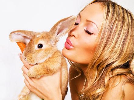 Обои Девушка с кроликом