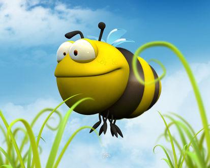Обои очень большая и толстая Пчела