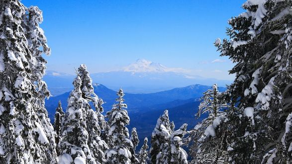 Обои Снежный пейзаж