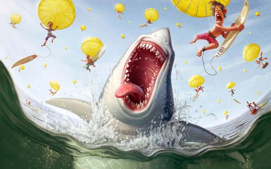 Обои Праздник у голодной акулы: С неба падают сёрфингисты с парашютами