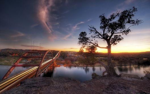 Обои Мост над рекой, одинокое дерево и закат... на другом берегу расположился город