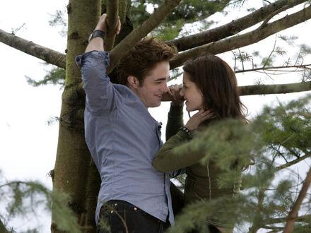 Обои Белла и Эдвард улыбаются друг другу на ветках дерева