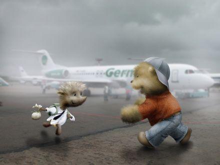 Обои Мишка встречает в аэропорту прилетевшего ёжика