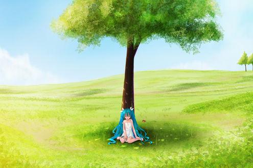Обои Вокалоид Хатсуне Мику на поляне сидит под одиноко стоящим деревом
