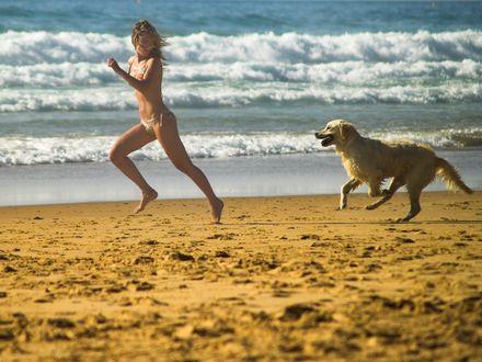 Обои Девушка бежит наперегонки с собакой по пляжу
