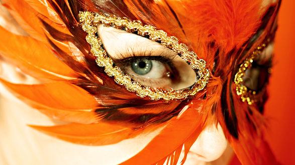 Обои Девушка в рыжей маске из перьев