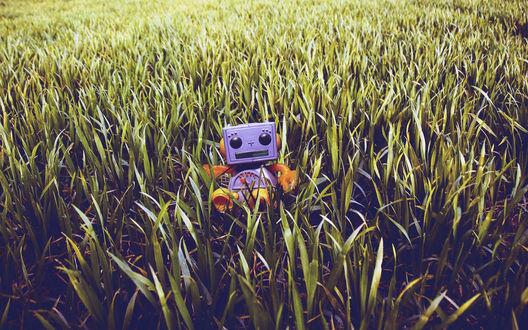 Обои Маленький игрушечный робот в траве