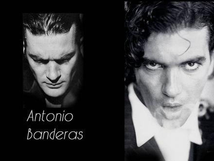 Обои Антонио Бандерес Antonio Banderas