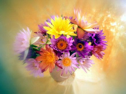 Обои Букет цветов
