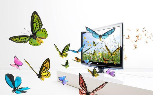 Обои Плоский телевизор LG с зD технологией, из которого вырываются бабочки