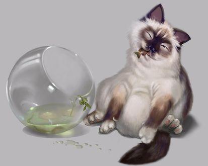 Обои Кошак перевернул аквариум и наслаждается пойманной рыбкой