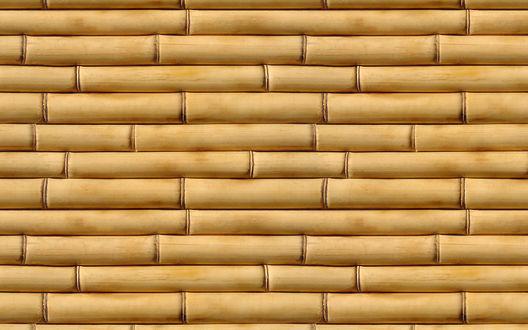 Обои Текстура бамбука