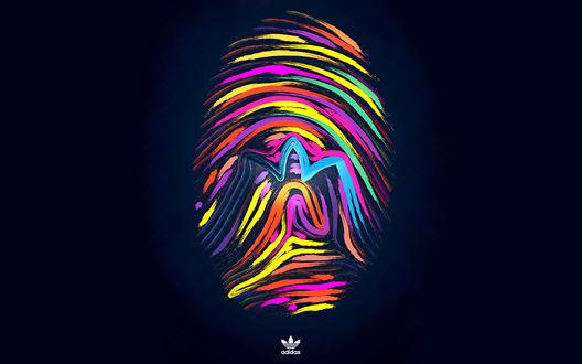 Обои Цветной отпечаток пальца (adidas)
