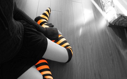 Обои Девушка сидит на полу в оранжево-черных гольфах