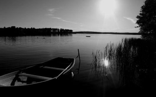 Обои Лодка на красивом пруду