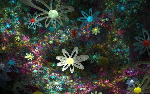 Обои Множество красивых и необычных цветов