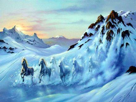 Обои Табун лошадей спускается с горы