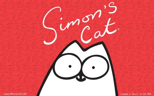 Обои Simon's cat