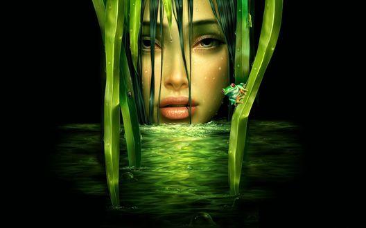 Обои Красивый лик богини воды, рядом верная слуга-лягуха