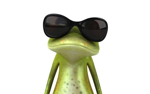 Обои Крутой лягушонок в черных очках, представляющий себя Джеймс Бондом