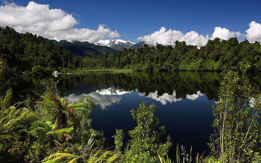 Обои Озеро скрылось от суеты посреди леса