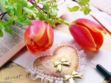 Обои Тюльпаны и подушечка в виде сердечка