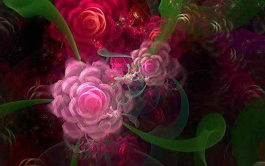 Обои Красивые розы из абстрактных круглешков