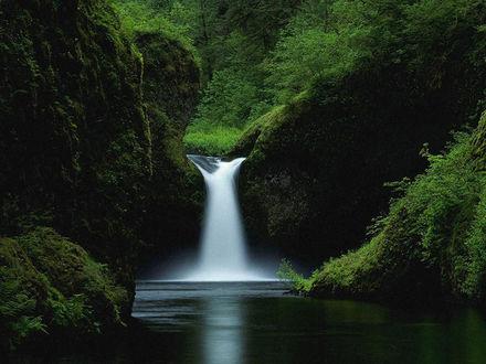 Обои Маленький водопад , спрятанный в лесных трущобах