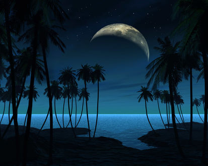 Обои Тихая лунная ночь на морском берегу-луна,море,пальмы