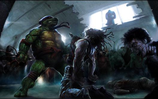 Обои Черепашки Ниндзя выросли, многому научились, и теперь воюют против зомби