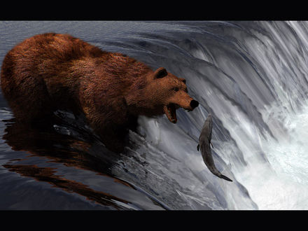 Обои Медведь пытается поймать рыбу прямо на самом краю водопада