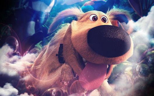 Обои Персонаж мультфильма Вверх радостный пес с восторгом в глазах летит среди туч